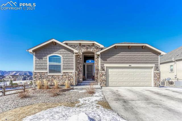 1011 Night Blue Circle, Monument, CO 80132 (#5533234) :: 8z Real Estate