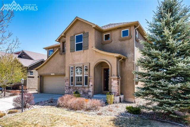 5027 Petrified Forest Trail, Colorado Springs, CO 80924 (#5537981) :: RE/MAX Advantage