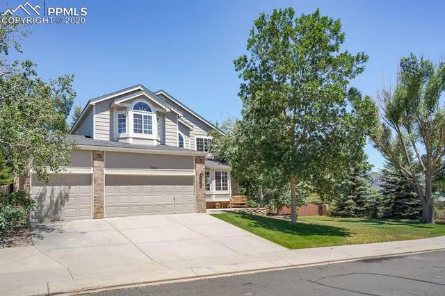 7815 Curlew Court, Colorado Springs, CO 80920 (#5540854) :: CC Signature Group
