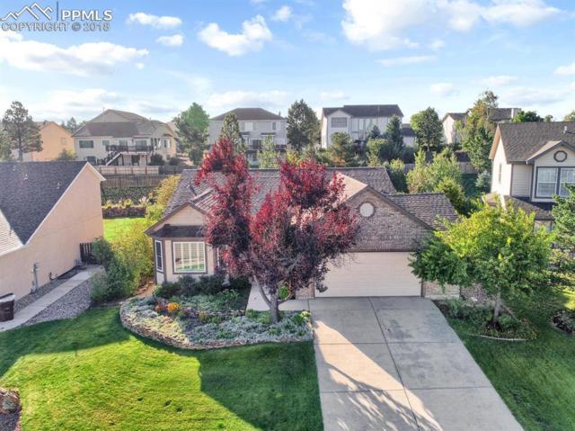 2325 Amberwood Lane, Colorado Springs, CO 80920 (#5544468) :: Action Team Realty