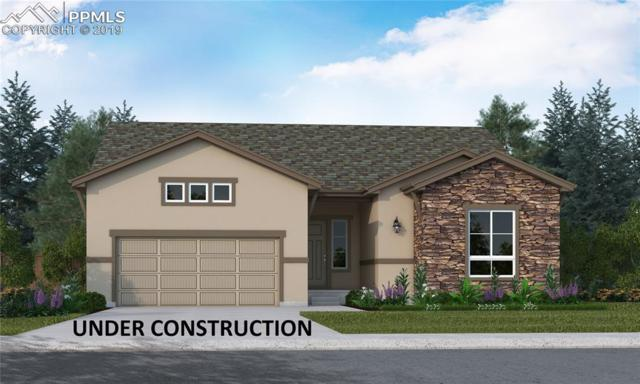 16285 Thunder Cat Way, Monument, CO 80132 (#5548325) :: The Hunstiger Team