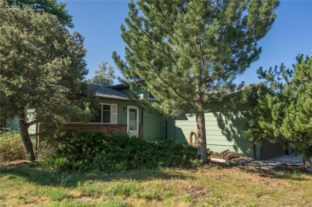 6095 Del Rey Drive, Colorado Springs, CO 80918 (#5553998) :: 8z Real Estate