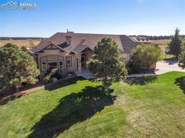 8555 Rope Horse Point, Colorado Springs, CO 80908 (#5564833) :: 8z Real Estate