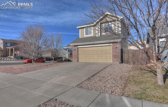 5392 Statute Drive, Colorado Springs, CO 80922 (#5565867) :: The Treasure Davis Team