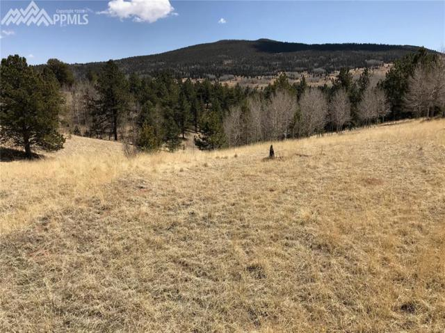 826 May Queen Drive, Cripple Creek, CO 80813 (#5565988) :: 8z Real Estate
