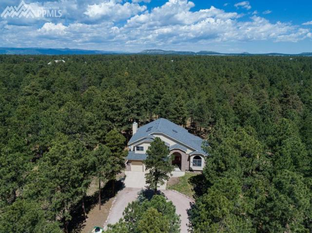 17375 Charter Pines Drive, Monument, CO 80132 (#5568007) :: 8z Real Estate