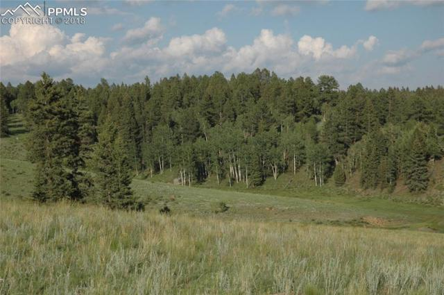TBD 1 County 51 Road, Divide, CO 80814 (#5568523) :: Colorado Home Finder Realty