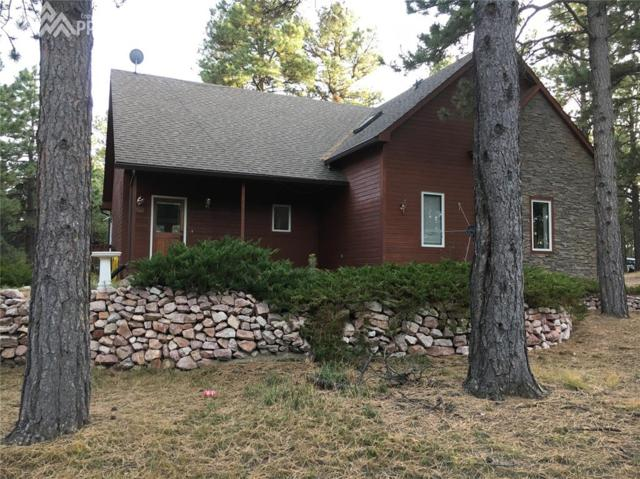 615 E Highway 105, Monument, CO 80132 (#5569992) :: Action Team Realty