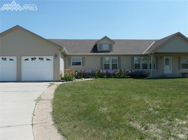 851 Circle Road, Palmer Lake, CO 80133 (#5570021) :: 8z Real Estate