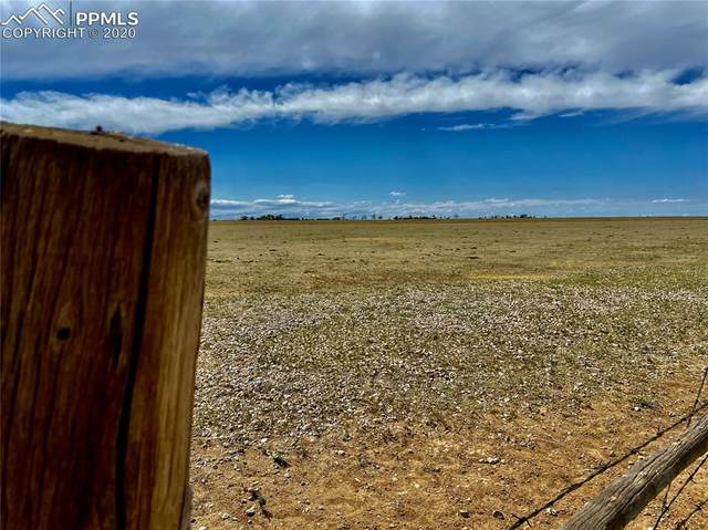 40140 N Big Springs Road, Rush, CO 80833 (#5573439) :: Finch & Gable Real Estate Co.