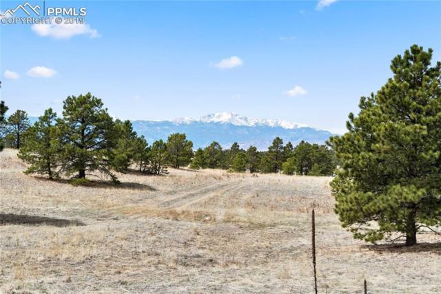 9173 Nature Refuge Way, Colorado Springs, CO 80908 (#5575636) :: Perfect Properties powered by HomeTrackR