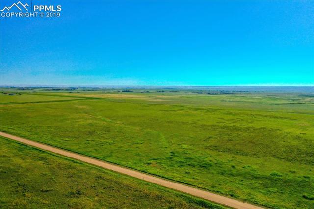 5170 Bar 10 Road, Colorado Springs, CO 80928 (#5578026) :: Compass Colorado Realty