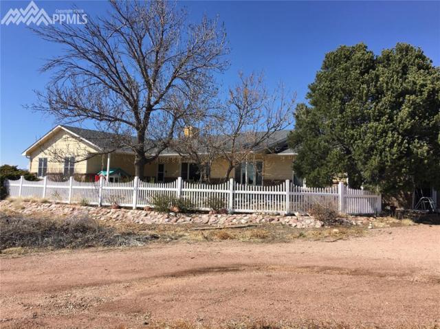 11050 Peaceful Valley Road, Colorado Springs, CO 80925 (#5578113) :: 8z Real Estate