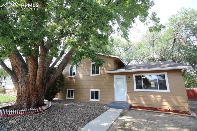 819 Hayden Drive, Colorado Springs, CO 80910 (#5578214) :: Action Team Realty