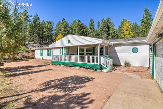 1011 W Bison Creek Trail, Divide, CO 80814 (#5578864) :: Compass Colorado Realty