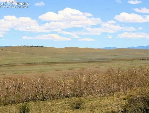 TBD Redhill Road, Fairplay, CO 80440 (#5579413) :: Action Team Realty