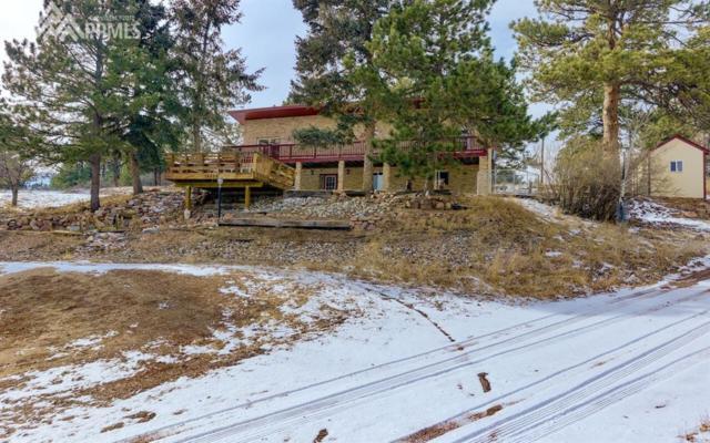 18650 Cloven Hoof Road, Palmer Lake, CO 80133 (#5582891) :: 8z Real Estate