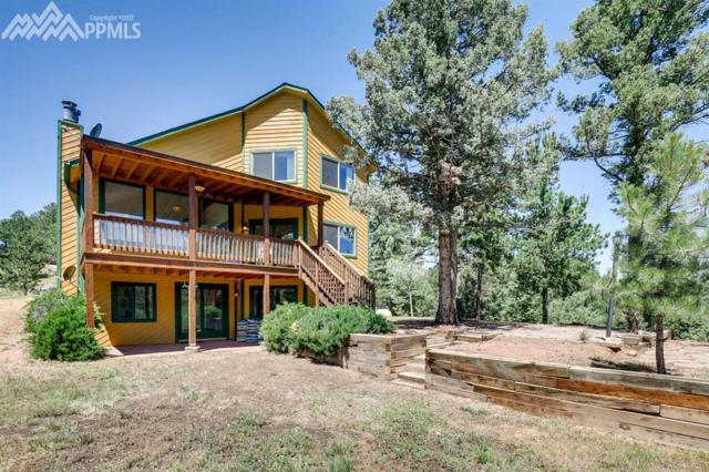 455 Douglas Fir Drive, Woodland Park, CO 80863 (#5584816) :: 8z Real Estate