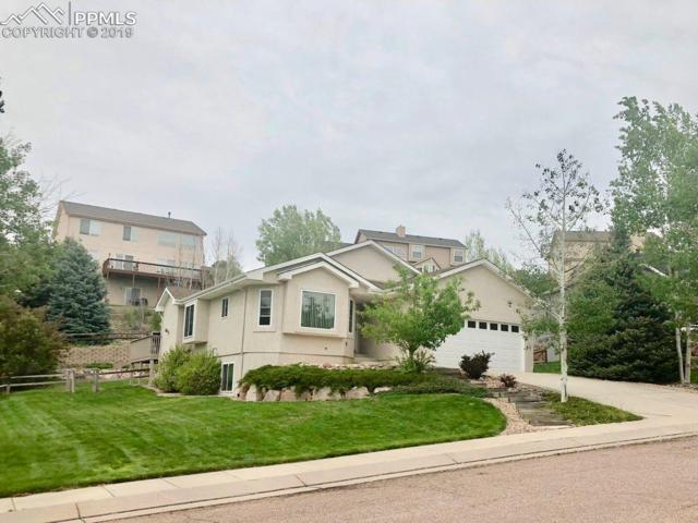 15515 Curwood Drive, Colorado Springs, CO 80921 (#5588318) :: The Peak Properties Group