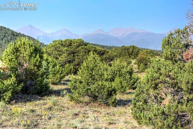 575 Roundup Road, Westcliffe, CO 81252 (#5589489) :: Action Team Realty