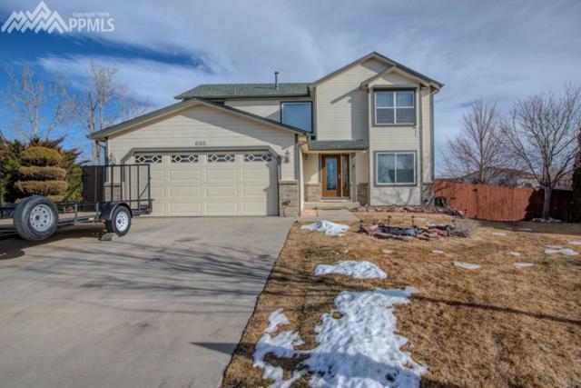 665 Brinn Court, Colorado Springs, CO 80911 (#5591826) :: 8z Real Estate