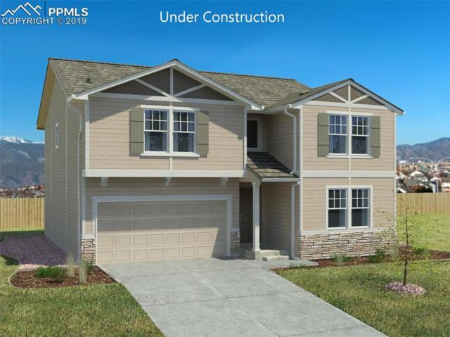 10875 Lavanya Place, Fountain, CO 80817 (#5594362) :: Tommy Daly Home Team
