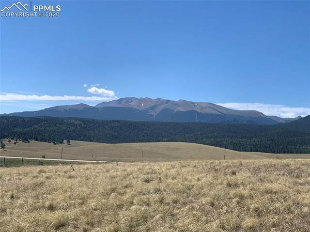 254 County Road 25, Divide, CO 80814 (#5595062) :: Fisk Team, RE/MAX Properties, Inc.