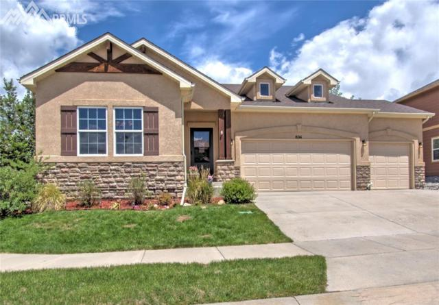 804 Fire Rock Place, Colorado Springs, CO 80921 (#5605017) :: 8z Real Estate