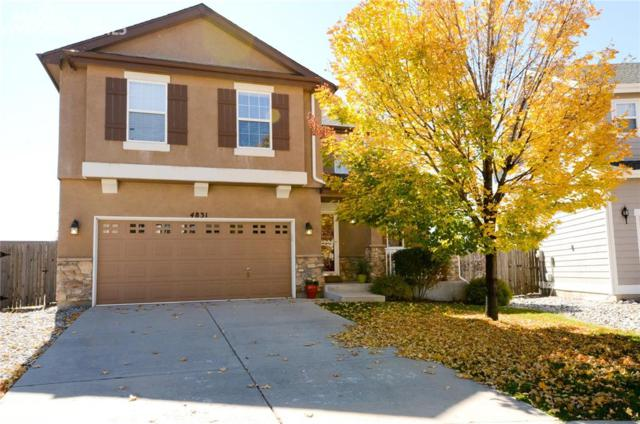 4831 Turning Leaf Way, Colorado Springs, CO 80922 (#5606655) :: Action Team Realty