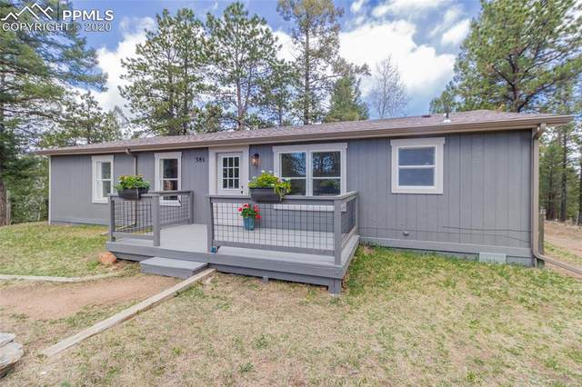 386 Gerka Lane, Florissant, CO 80816 (#5614642) :: Colorado Home Finder Realty