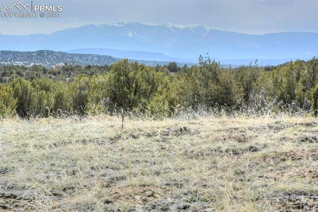 TBD Par 21 Muddy Creek Road, Pueblo, CO 81004 (#5617068) :: CC Signature Group
