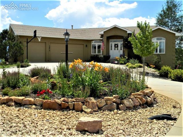 12510 Kaibab Court, Colorado Springs, CO 80908 (#5622072) :: 8z Real Estate