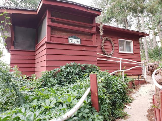 356 Montana Avenue, Palmer Lake, CO 80133 (#5622272) :: Colorado Home Finder Realty