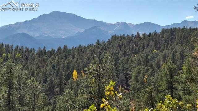 9005 Mountain Road, Cascade, CO 80809 (#5625157) :: The Treasure Davis Team