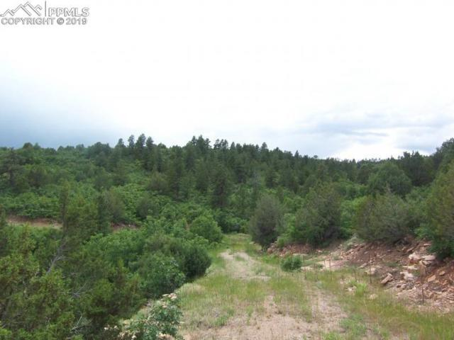 TBD Savage Road, Beulah, CO 81023 (#5634264) :: Perfect Properties powered by HomeTrackR