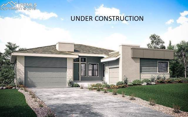 10766 Bluffside Drive, Lone Tree, CO 80124 (#5637251) :: Tommy Daly Home Team