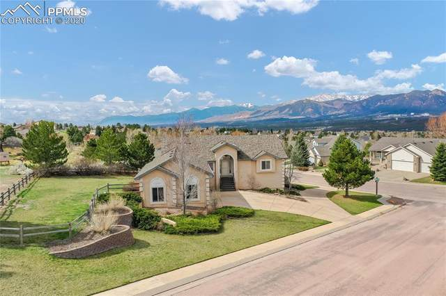 801 Timbertop Court, Colorado Springs, CO 80921 (#5639684) :: The Harling Team @ Homesmart Realty Group