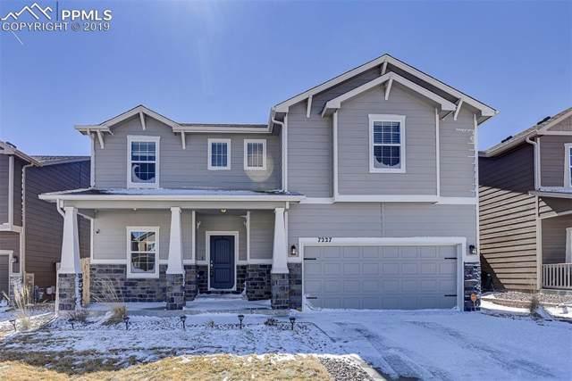7227 Thorn Brush Way, Colorado Springs, CO 80923 (#5640030) :: The Peak Properties Group