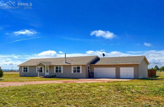 17355 Mckenzie Road, Peyton, CO 80831 (#5641909) :: The Treasure Davis Team