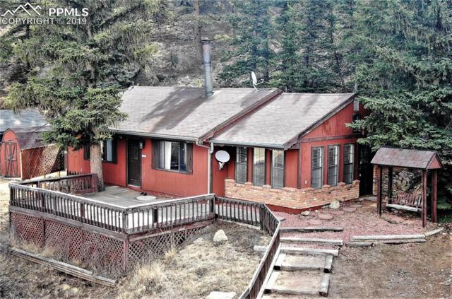 61 Brook-By-Way, Florissant, CO 80816 (#5642522) :: CC Signature Group