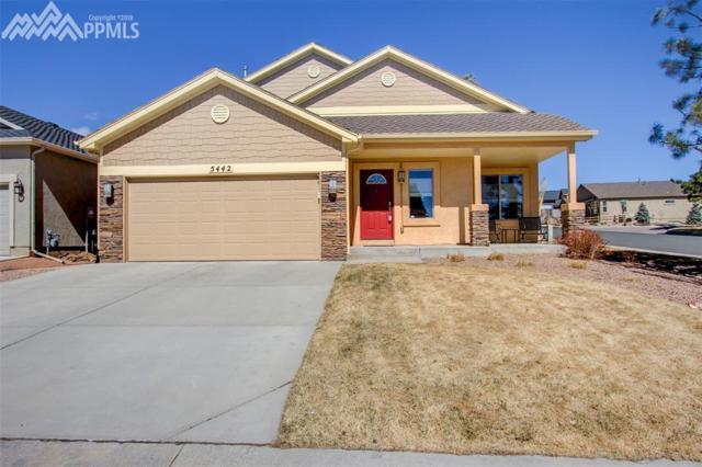 5442 Majestic Drive, Colorado Springs, CO 80919 (#5645651) :: 8z Real Estate