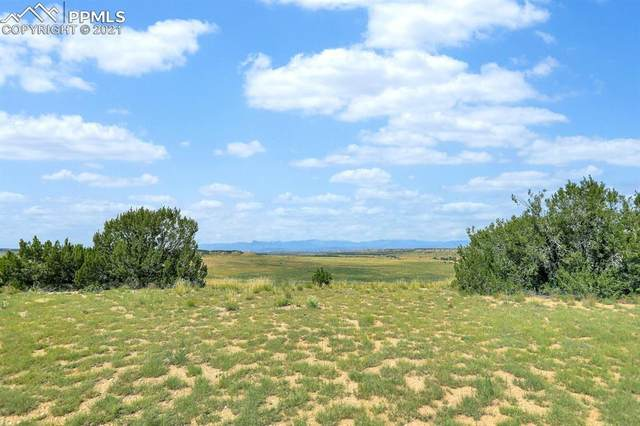 0000 Highstakes Drive, Pueblo, CO 81004 (#5647872) :: Action Team Realty