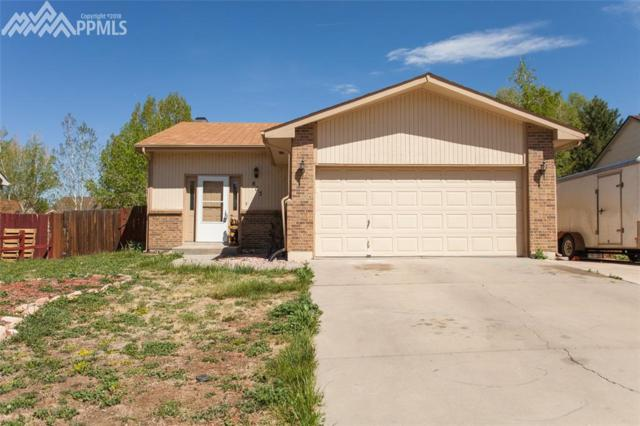 863 Daffodil Street, Fountain, CO 80817 (#5648045) :: 8z Real Estate