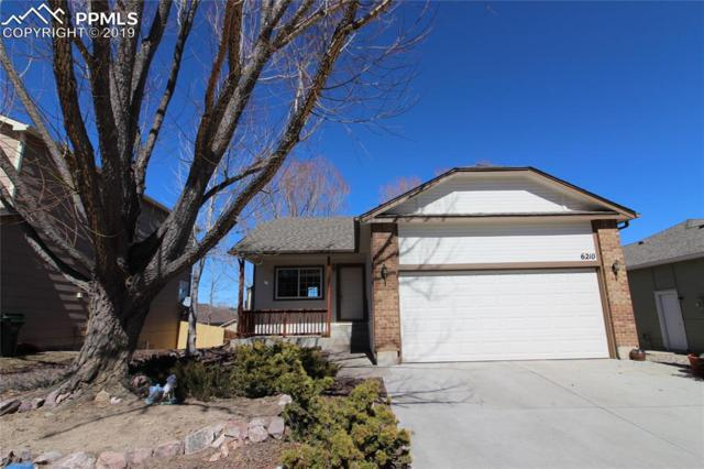 6210 Ursa Lane, Colorado Springs, CO 80919 (#5648046) :: Venterra Real Estate LLC