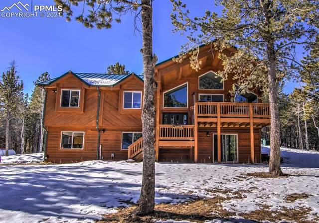 385 Winding Valley Drive, Woodland Park, CO 80863 (#5648471) :: The Treasure Davis Team | eXp Realty