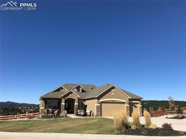 614 Woodmoor Acres Drive, Monument, CO 80132 (#5652855) :: Action Team Realty