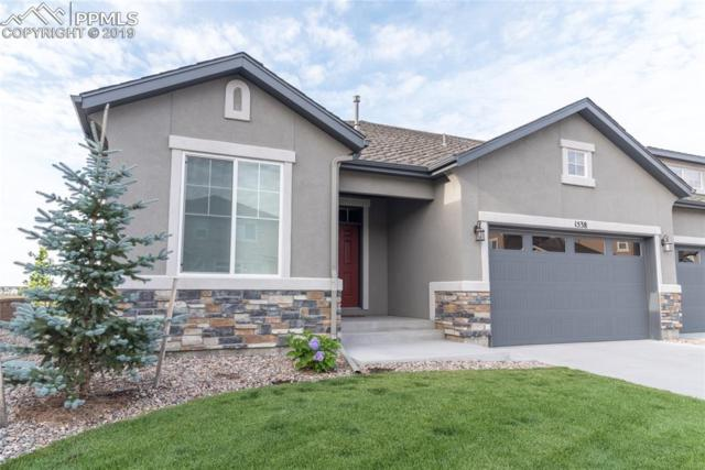 1538 Promontory Bluff View, Colorado Springs, CO 80921 (#5655926) :: Tommy Daly Home Team