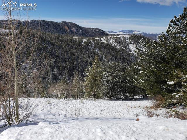 125 Golden Cycle Circle, Cripple Creek, CO 80813 (#5659810) :: The Peak Properties Group