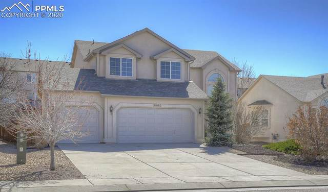 3905 Pronghorn Meadows Circle, Colorado Springs, CO 80922 (#5663778) :: Tommy Daly Home Team