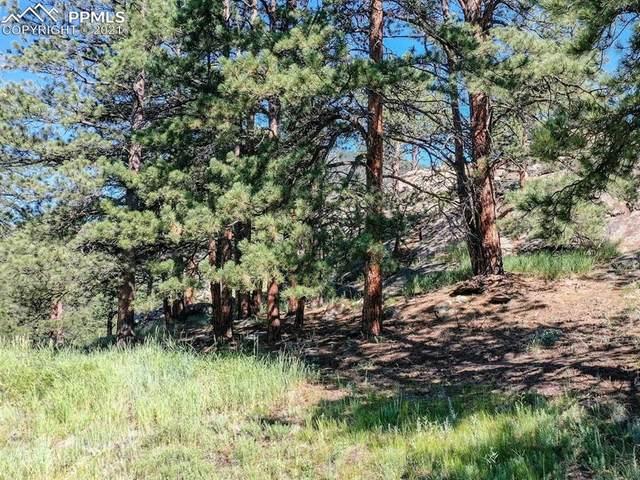 000 Elk Road, Lyons, CO 80540 (#5666320) :: CC Signature Group